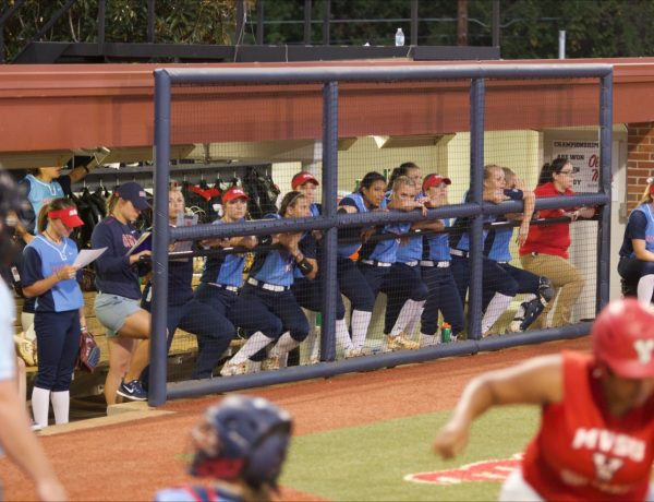Action shots at the Ole Miss Softball game vs. Mississippi Valley State at home on November 1st.